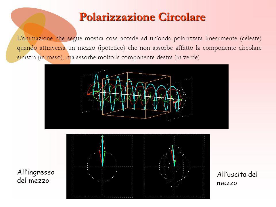 Polarizzazione Circolare