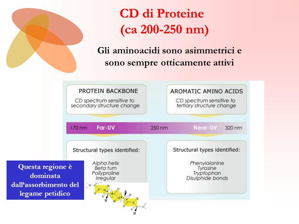 CD di Proteine (ca 200-250 nm) Gli aminoacidi sono asimmetrici e