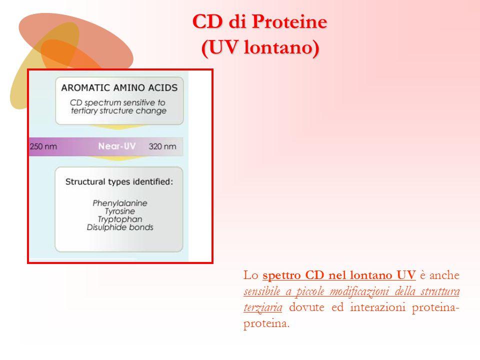 CD di Proteine (UV lontano)