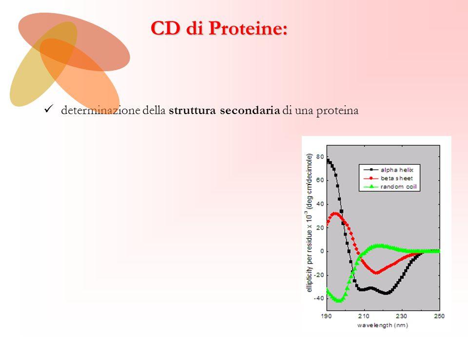 CD di Proteine: determinazione della struttura secondaria di una proteina