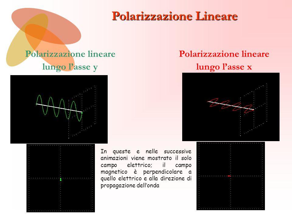 Polarizzazione lineare Polarizzazione lineare