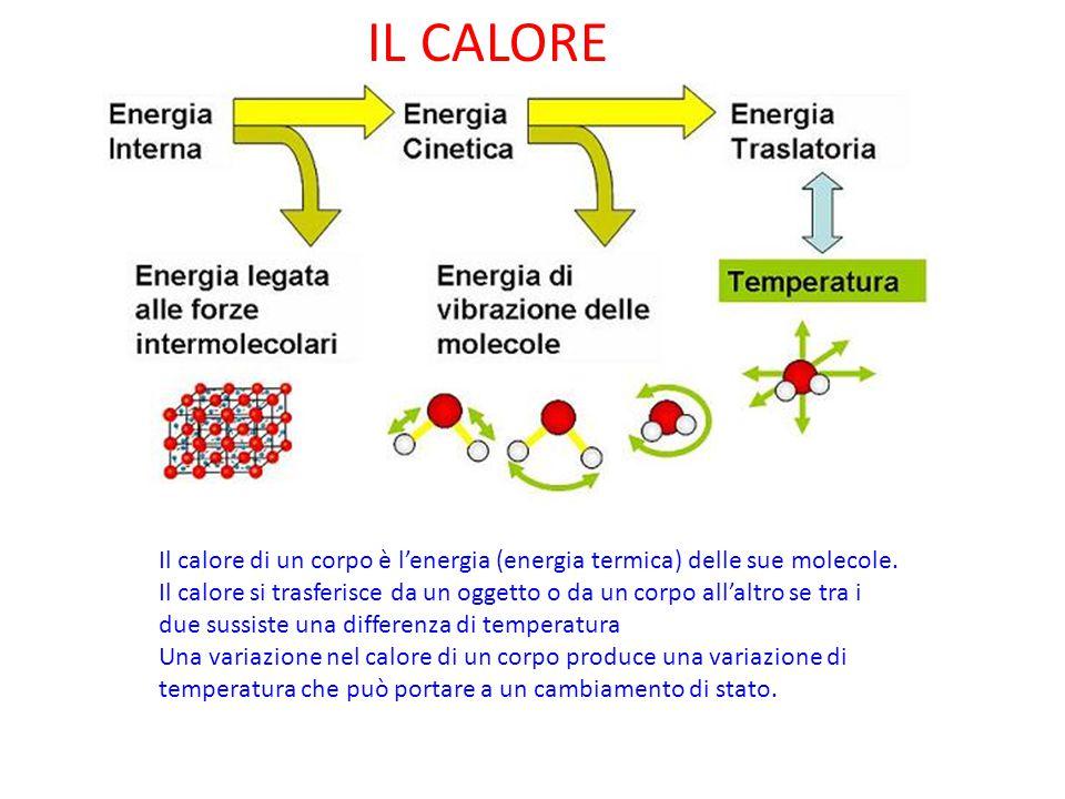 IL CALORE Il calore di un corpo è l'energia (energia termica) delle sue molecole.