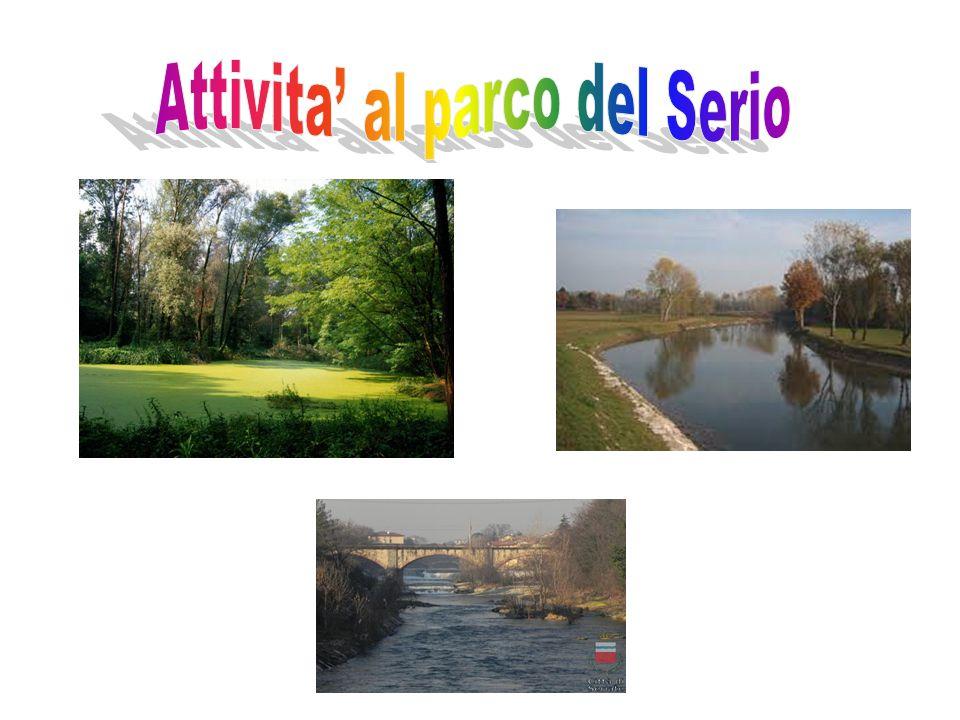 Attivita' al parco del Serio