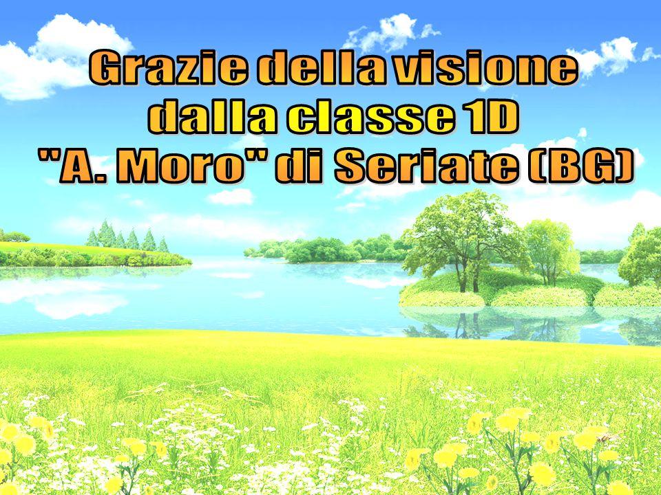 Grazie della visione dalla classe 1D A. Moro di Seriate (BG)