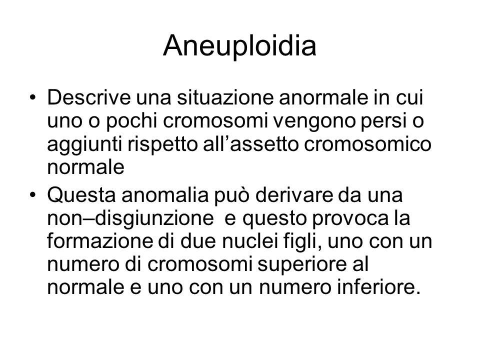 Aneuploidia Descrive una situazione anormale in cui uno o pochi cromosomi vengono persi o aggiunti rispetto all'assetto cromosomico normale.