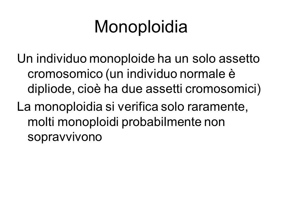 Monoploidia Un individuo monoploide ha un solo assetto cromosomico (un individuo normale è dipliode, cioè ha due assetti cromosomici)