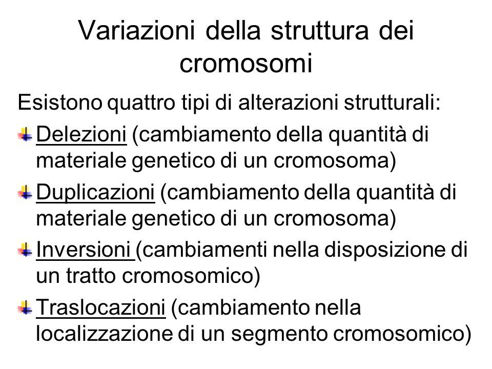 Variazioni della struttura dei cromosomi