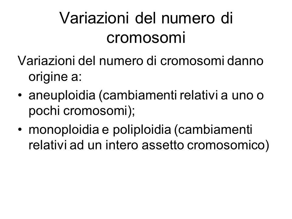 Variazioni del numero di cromosomi
