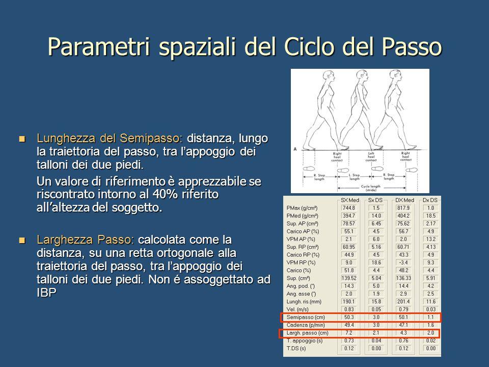 Parametri spaziali del Ciclo del Passo