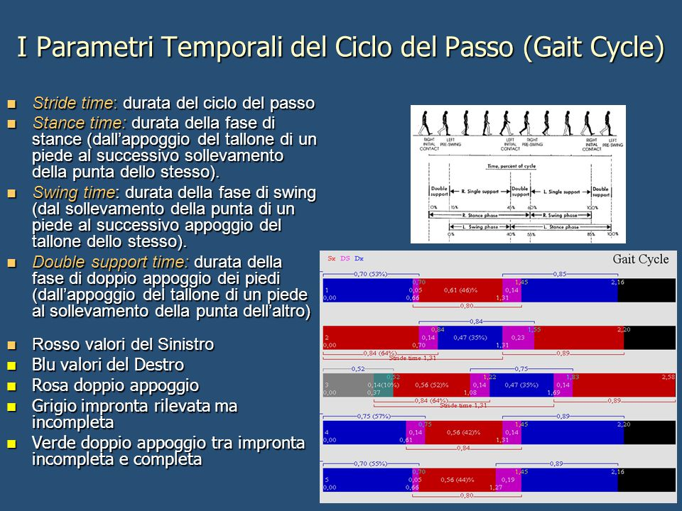 I Parametri Temporali del Ciclo del Passo (Gait Cycle)