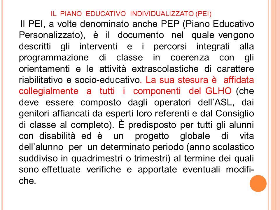 IL PIANO EDUCATIVO INDIVIDUALIZZATO (PEI)