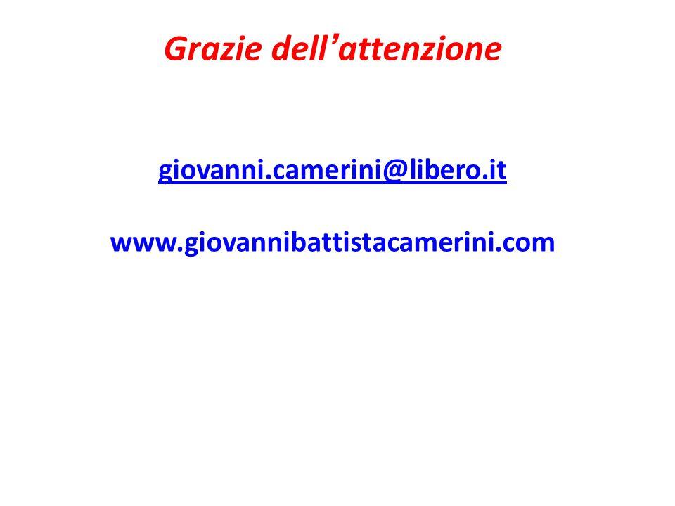 Grazie dell'attenzione giovanni. camerini@libero. it www