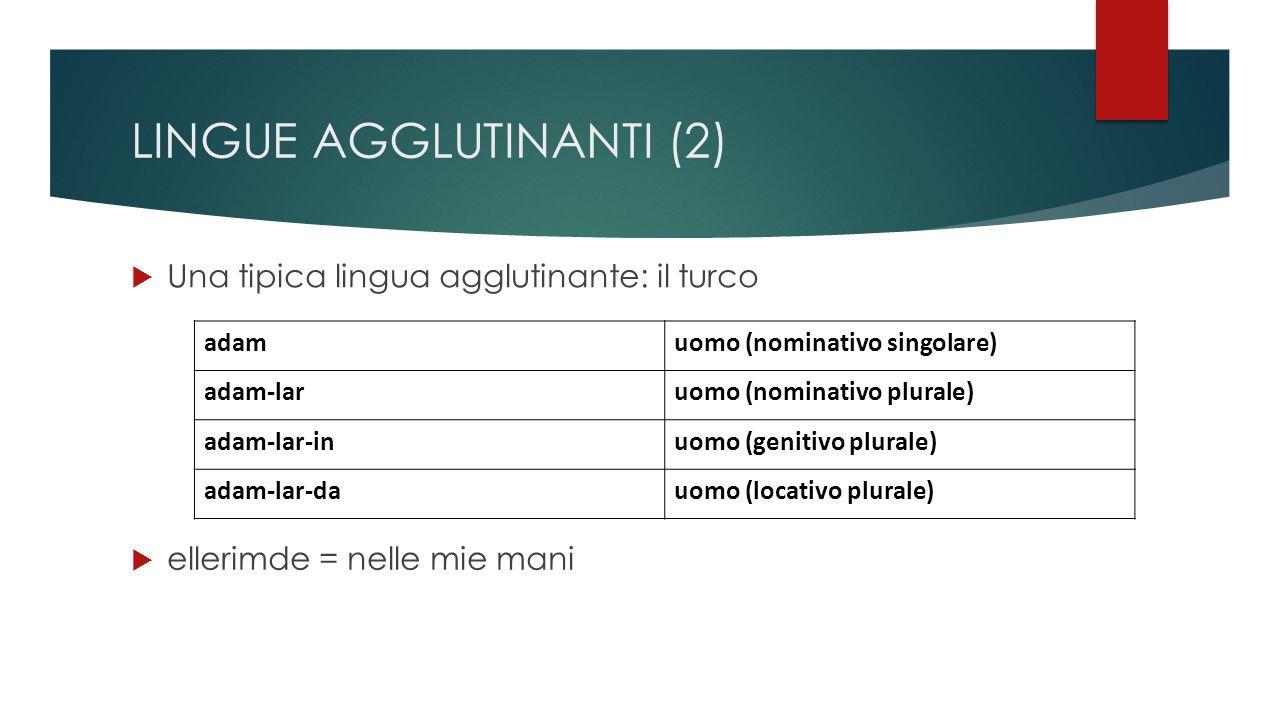 LINGUE AGGLUTINANTI (2)