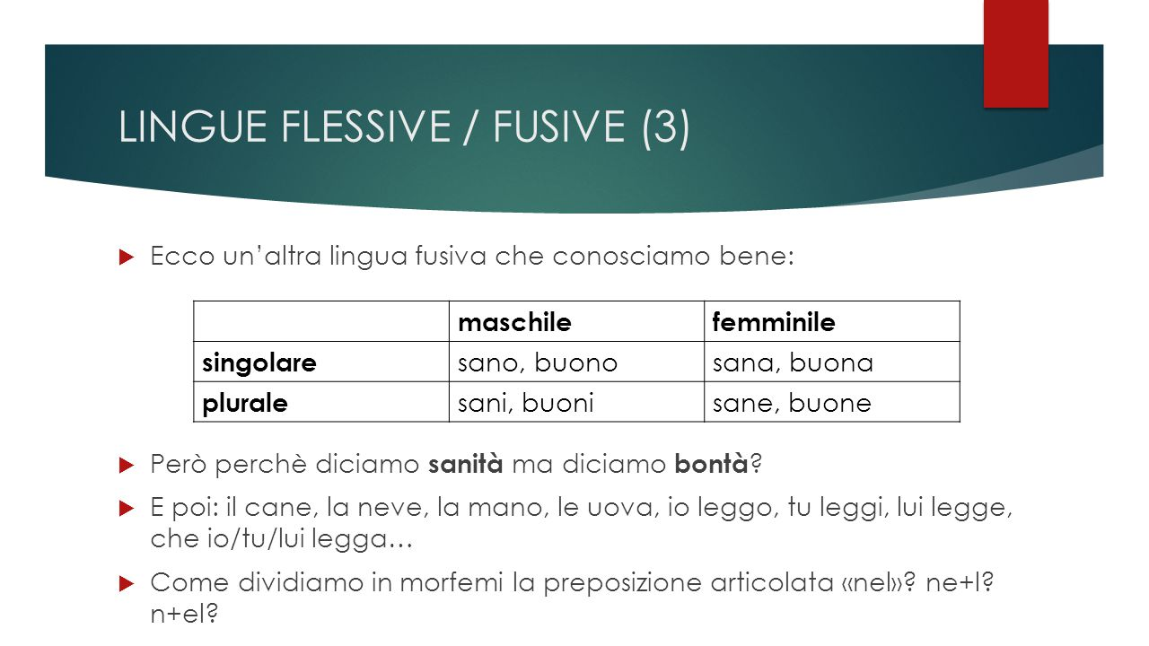 LINGUE FLESSIVE / FUSIVE (3)
