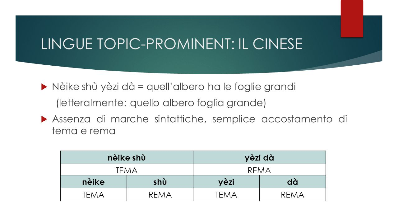 LINGUE TOPIC-PROMINENT: IL CINESE