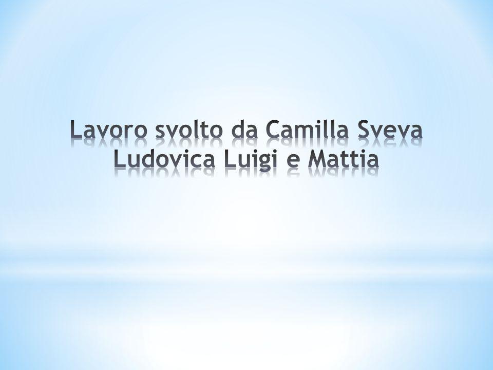 Lavoro svolto da Camilla Sveva Ludovica Luigi e Mattia