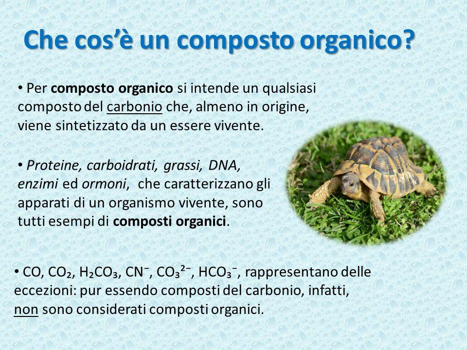 Che cos'è un composto organico