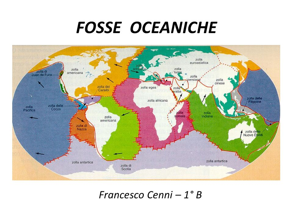 FOSSE OCEANICHE Francesco Cenni – 1° B