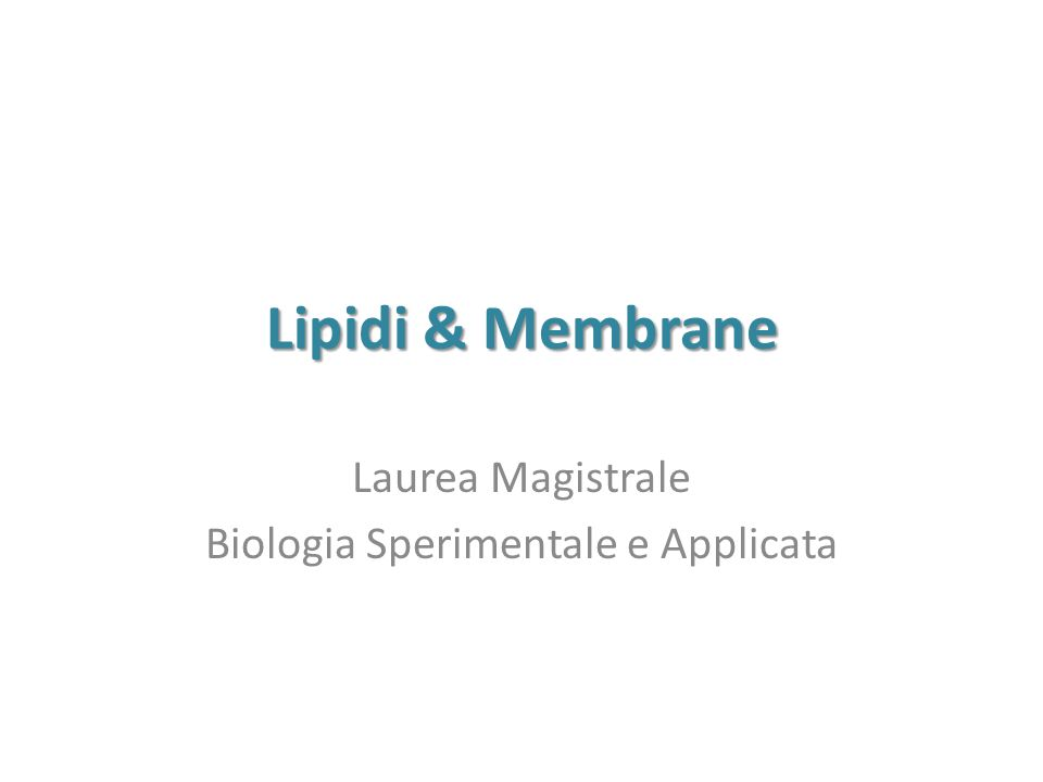 Laurea magistrale online search results for laurea for Laurea magistrale design