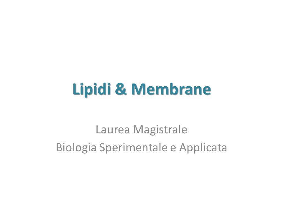 Laurea Magistrale Biologia Sperimentale e Applicata