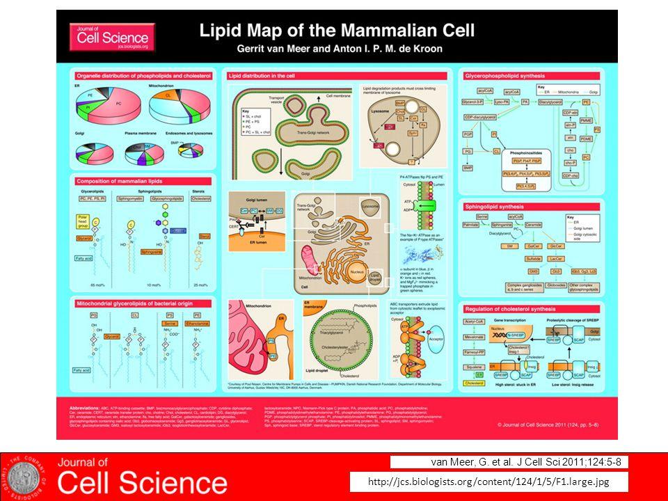 van Meer, G. et al. J Cell Sci 2011;124:5-8