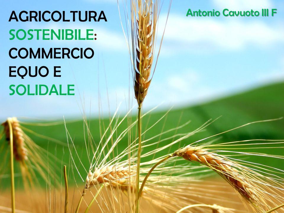 AGRICOLTURA SOSTENIBILE: COMMERCIO EQUO E SOLIDALE