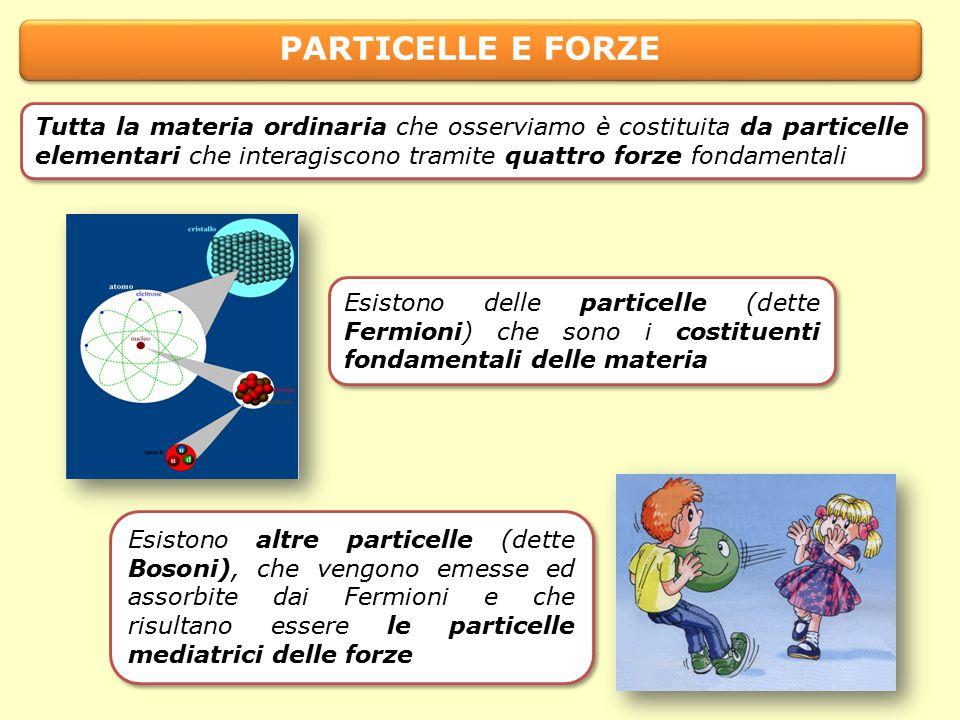 PARTICELLE E FORZE