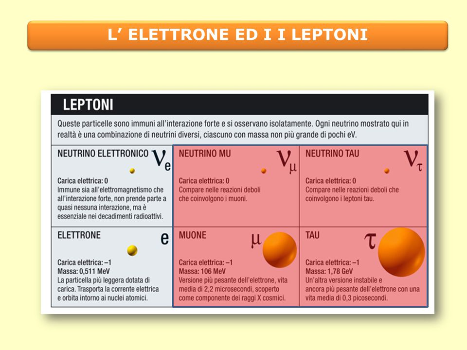 L' ELETTRONE ED I I LEPTONI