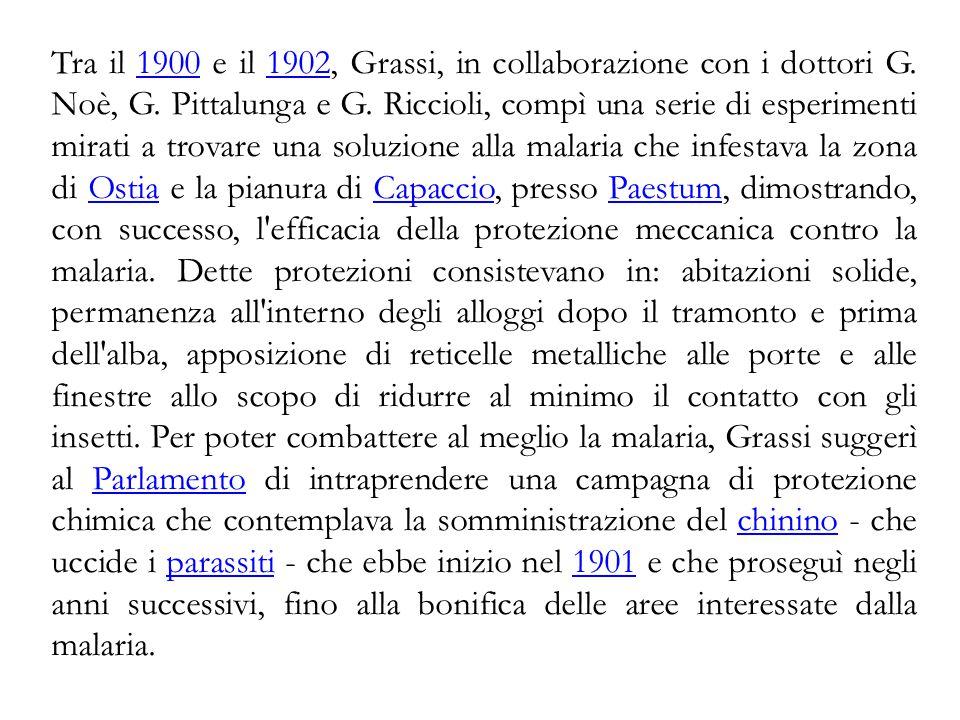 Tra il 1900 e il 1902, Grassi, in collaborazione con i dottori G