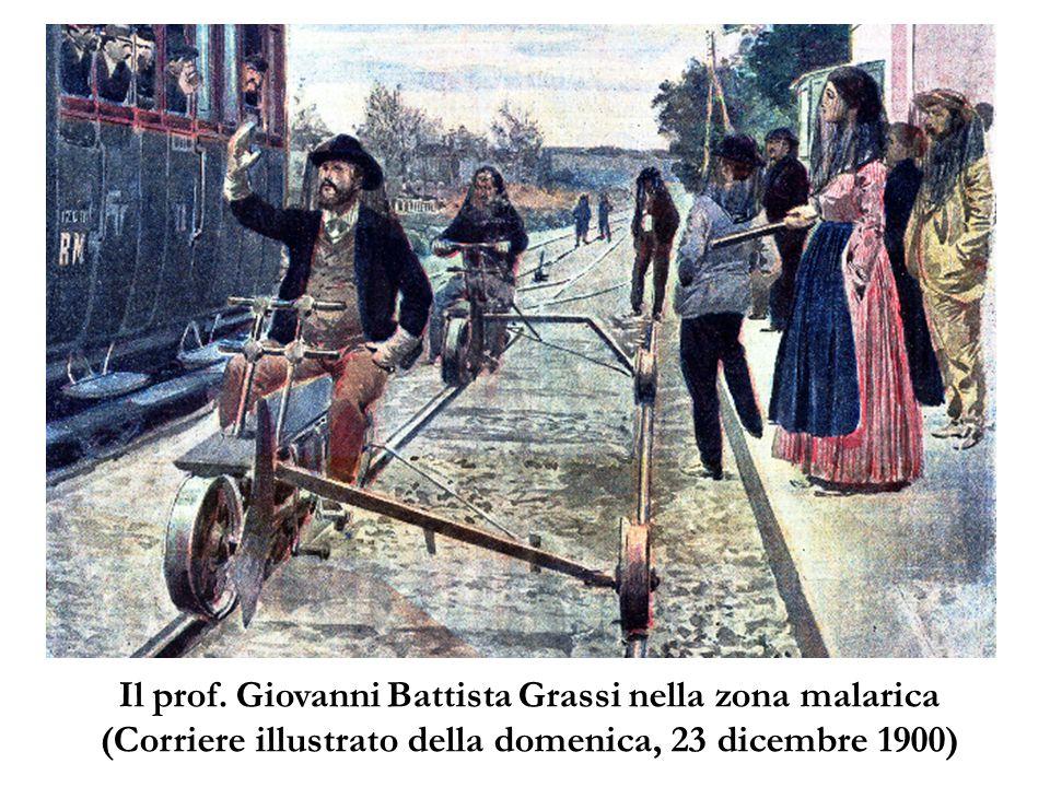 Il prof. Giovanni Battista Grassi nella zona malarica