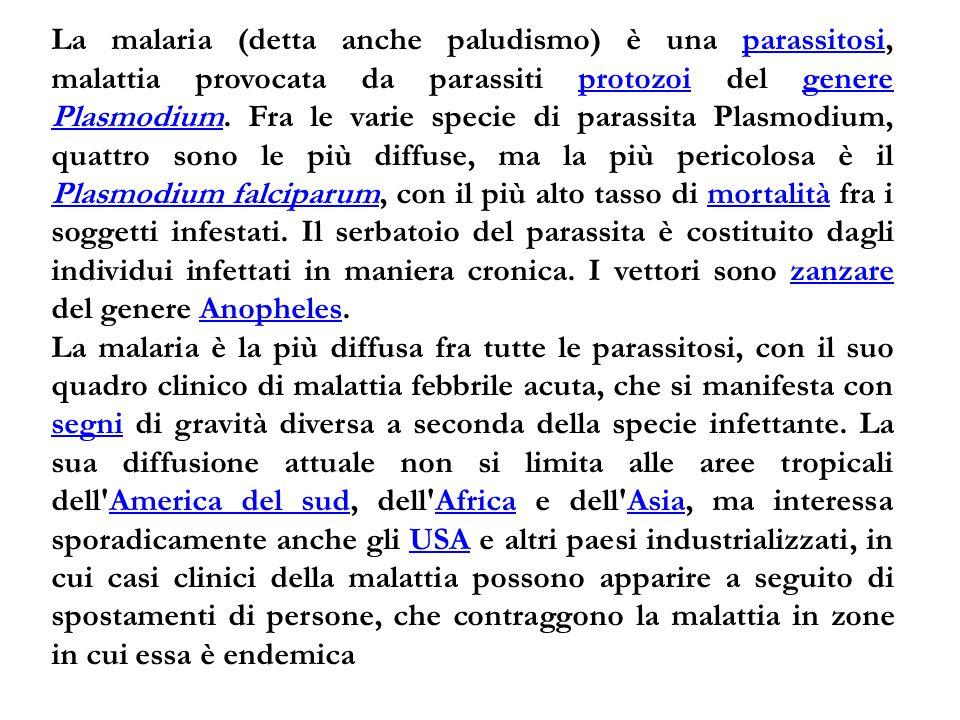 La malaria (detta anche paludismo) è una parassitosi, malattia provocata da parassiti protozoi del genere Plasmodium. Fra le varie specie di parassita Plasmodium, quattro sono le più diffuse, ma la più pericolosa è il Plasmodium falciparum, con il più alto tasso di mortalità fra i soggetti infestati. Il serbatoio del parassita è costituito dagli individui infettati in maniera cronica. I vettori sono zanzare del genere Anopheles.