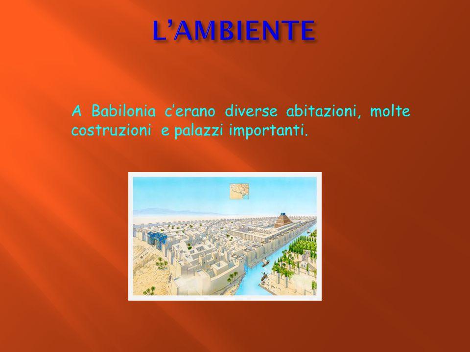 L'AMBIENTE A Babilonia c'erano diverse abitazioni, molte costruzioni e palazzi importanti.