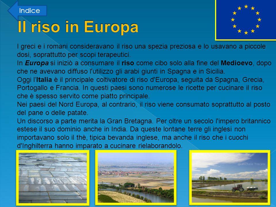 Il riso in Europa Indice