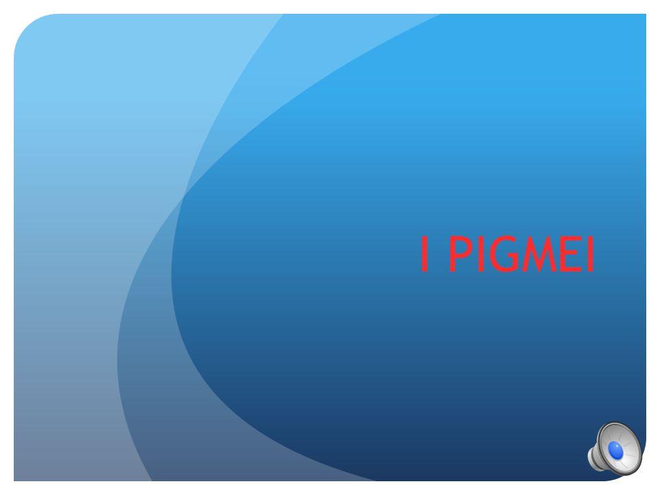 I PIGMEI