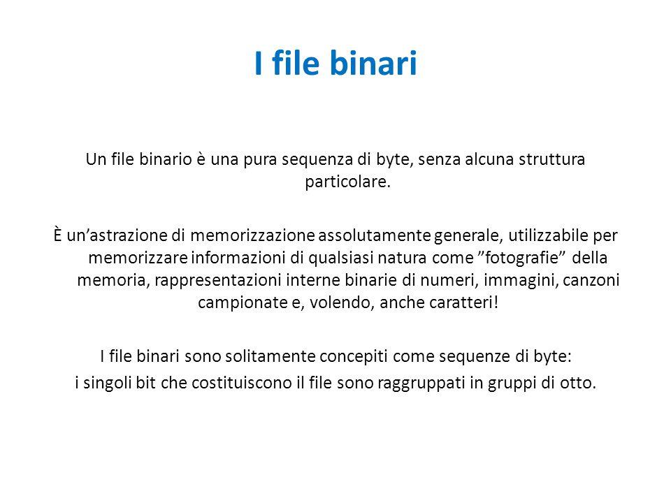 I file binari
