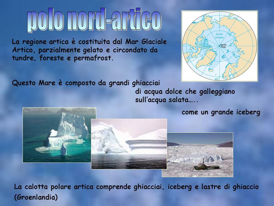 polo nord-artico La regione artica è costituita dal Mar Glaciale Artico, parzialmente gelato e circondato da tundre, foreste e permafrost.