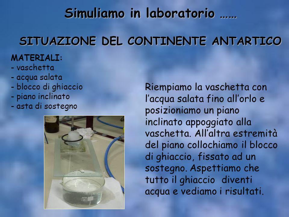 Simuliamo in laboratorio …… SITUAZIONE DEL CONTINENTE ANTARTICO