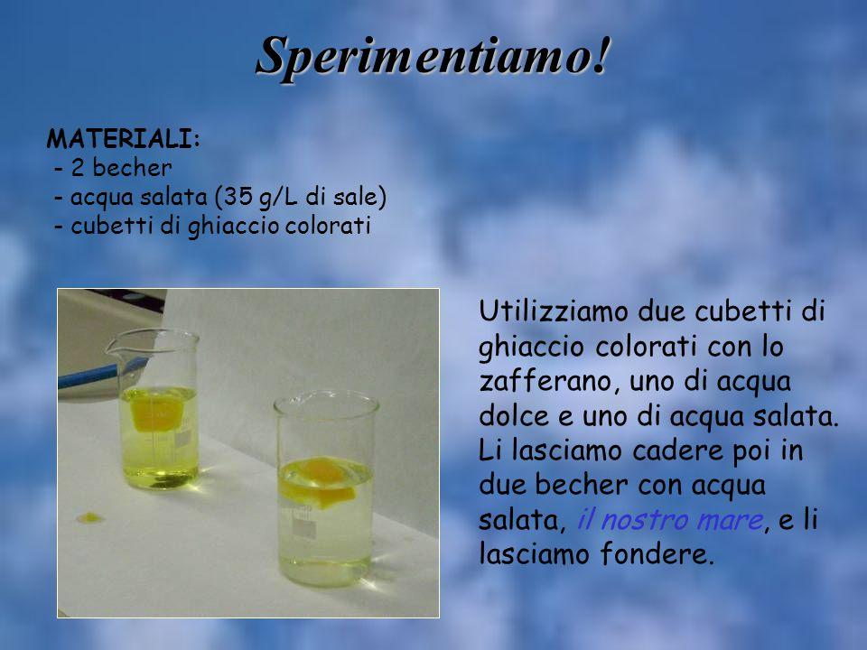 Sperimentiamo! MATERIALI: - 2 becher. - acqua salata (35 g/L di sale) - cubetti di ghiaccio colorati.