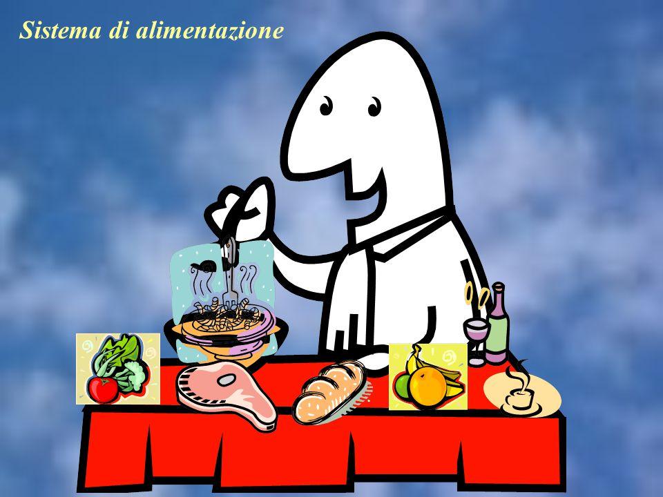 Sistema di alimentazione