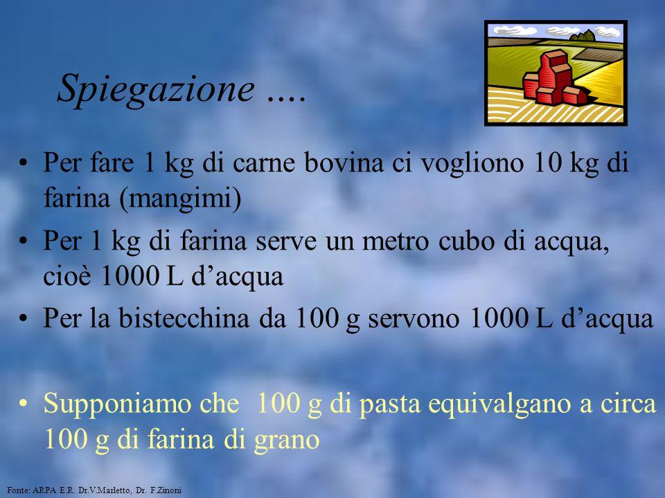 Spiegazione …. Per fare 1 kg di carne bovina ci vogliono 10 kg di farina (mangimi)