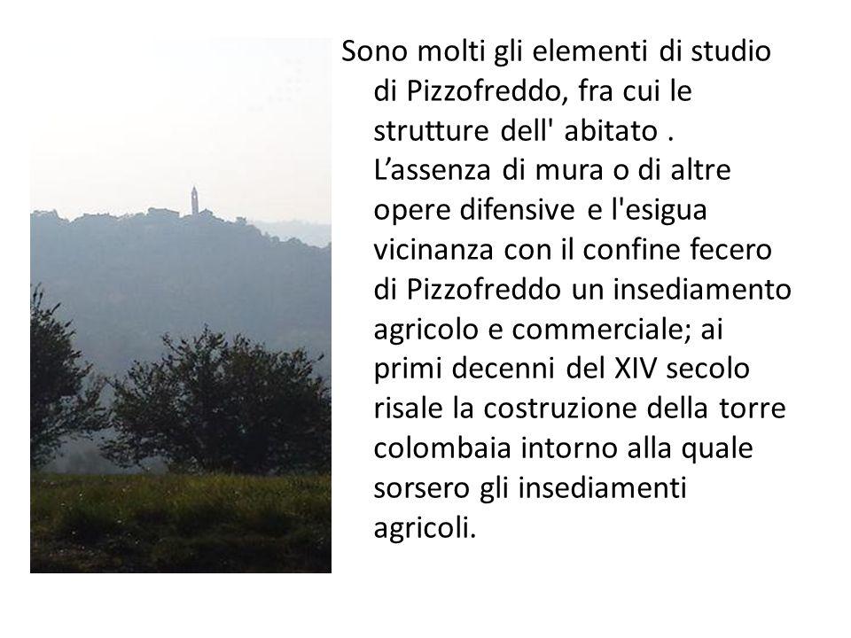 Sono molti gli elementi di studio di Pizzofreddo, fra cui le strutture dell abitato .
