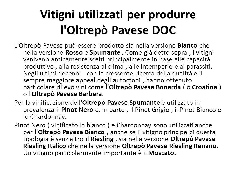 Vitigni utilizzati per produrre l Oltrepò Pavese DOC