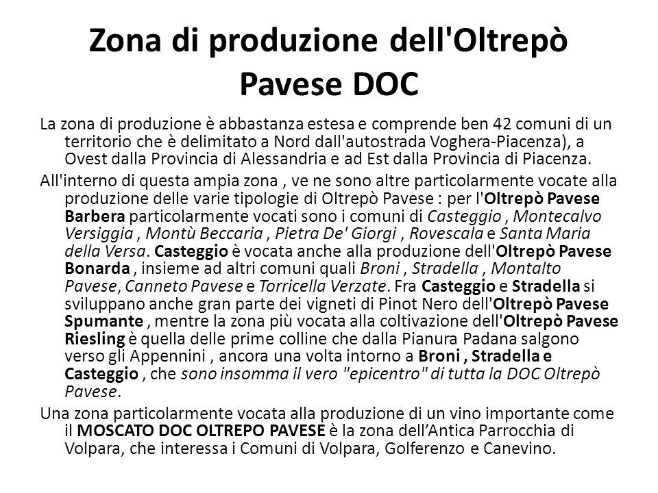 Zona di produzione dell Oltrepò Pavese DOC