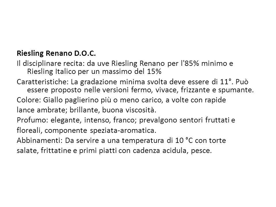 Riesling Renano D.O.C. Il disciplinare recita: da uve Riesling Renano per l 85% minimo e Riesling Italico per un massimo del 15%