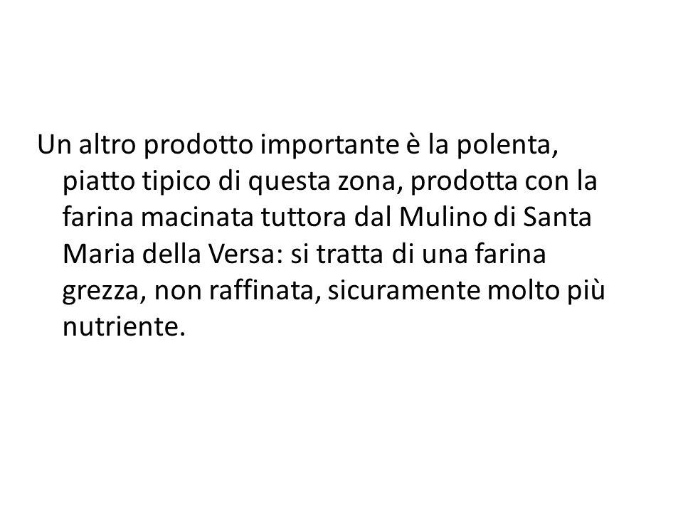 Un altro prodotto importante è la polenta, piatto tipico di questa zona, prodotta con la farina macinata tuttora dal Mulino di Santa Maria della Versa: si tratta di una farina grezza, non raffinata, sicuramente molto più nutriente.