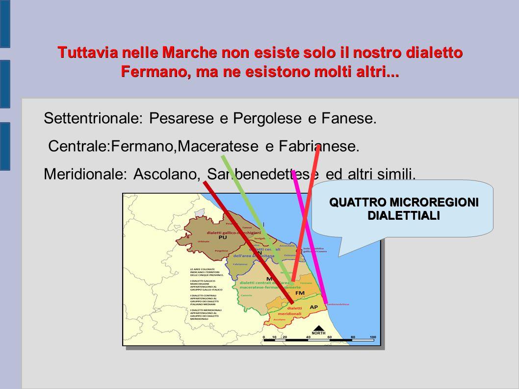 Settentrionale: Pesarese e Pergolese e Fanese.
