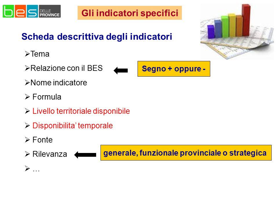 Gli indicatori specifici Scheda descrittiva degli indicatori