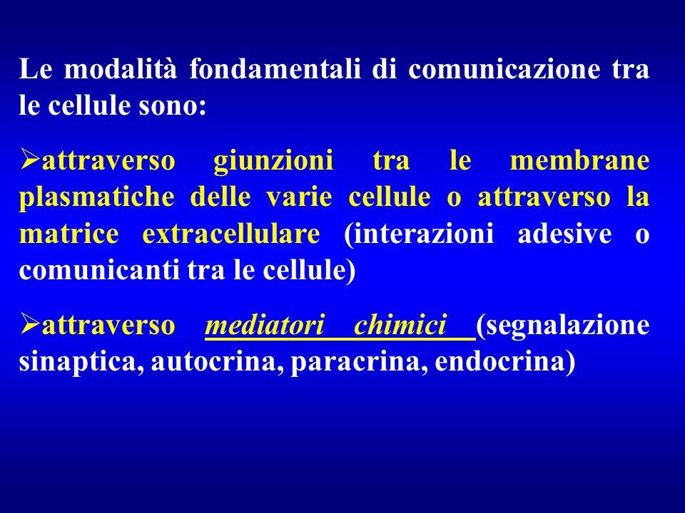 Le modalità fondamentali di comunicazione tra le cellule sono:
