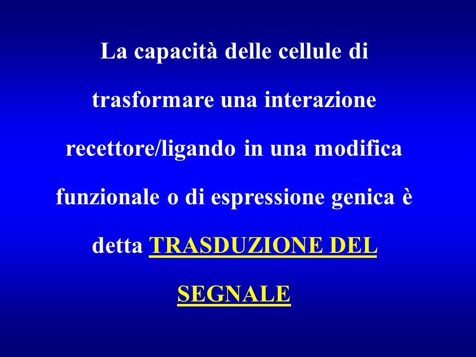La capacità delle cellule di trasformare una interazione recettore/ligando in una modifica funzionale o di espressione genica è detta TRASDUZIONE DEL SEGNALE