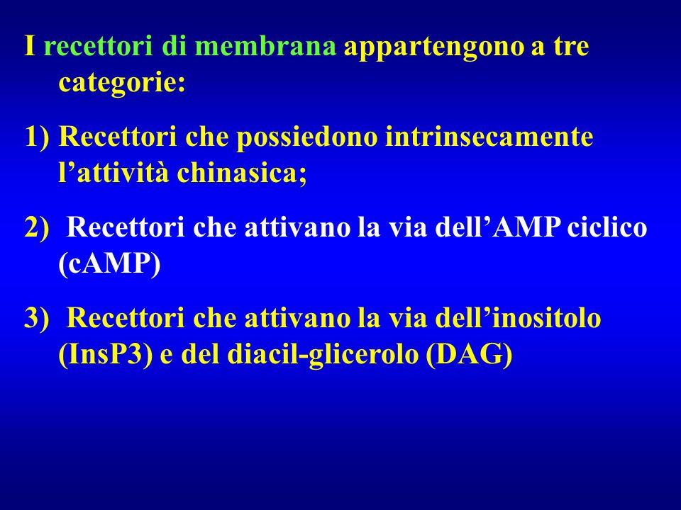 I recettori di membrana appartengono a tre categorie: